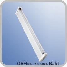 Облучатель ОБН01-75-001 Bakt настенный (без ламп и стартеров)